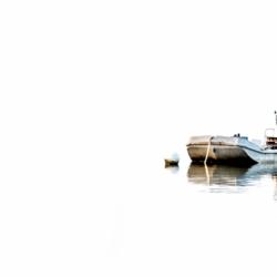 plate sur l'eau en couleur, fond blanc, krystyne ramon photos de paysages mer