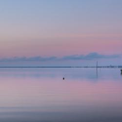 2 voliers sur l'eau, claouey, lever du jour, bassin arcachon, krystyne ramon