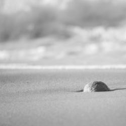 boule de sable sur la plage