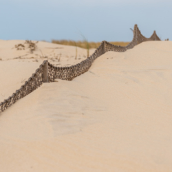 brise vent dans le sable
