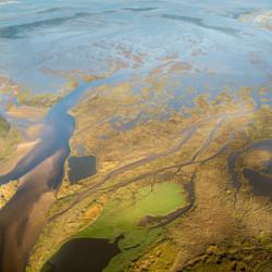 chenaux, vu d'avion, marée basse, bassin d'arcachon, krystyne ramon