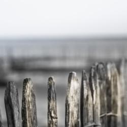 haut de barriere en bois