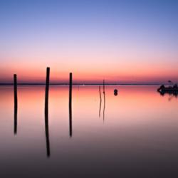 lever du jour, 4 pignots dans l'eau, bassin arcachon, krystyne ramon