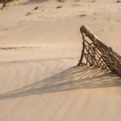 ombre brise vent dans le sable