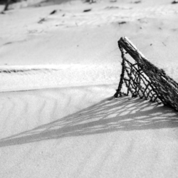 ombre brise vent en filet