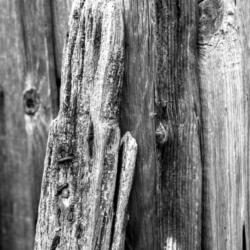 planche de bois usée