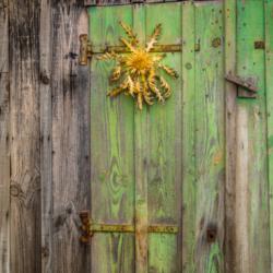 tournesol sur porte en bois